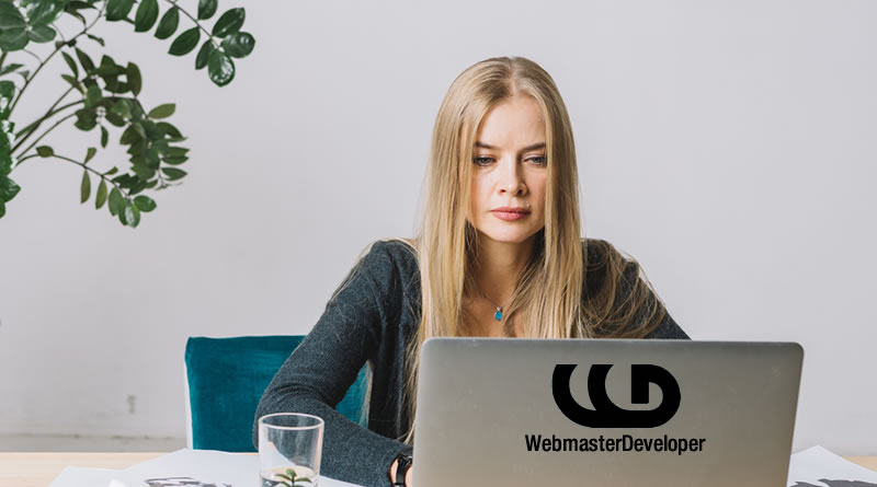 San Diego Freelance Web Designer Wordpress